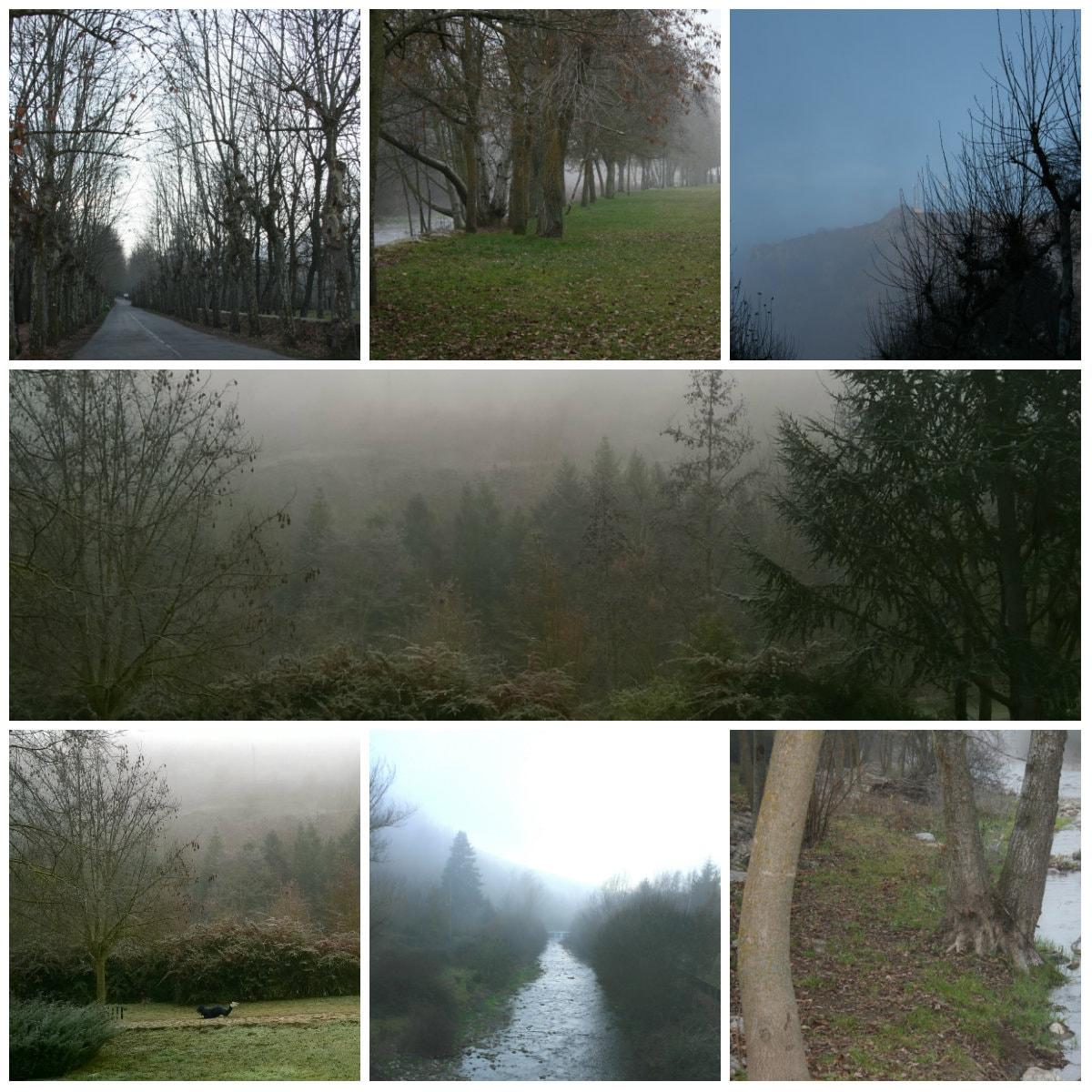 collage-min (2)