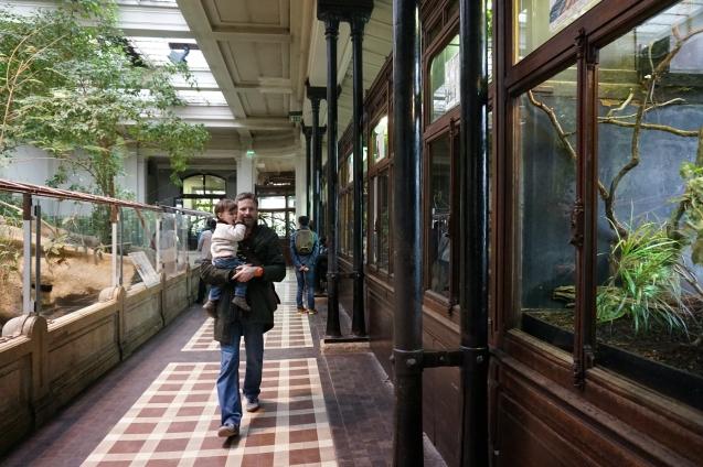 zoo - jardin des plantes 10