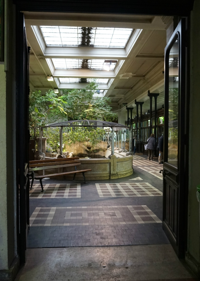 zoo - jardin des plantes 9