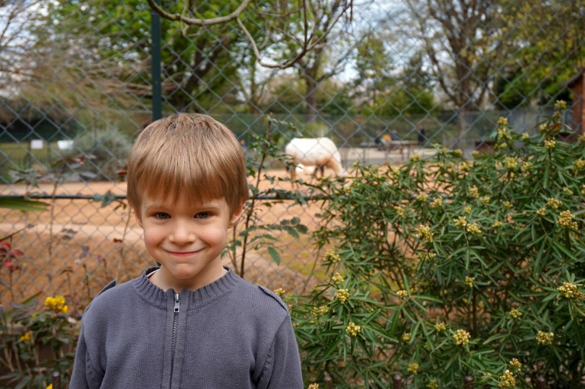 zoo - jardin des plantes