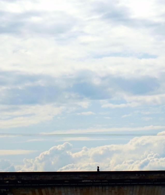 paseo por las nubes 12