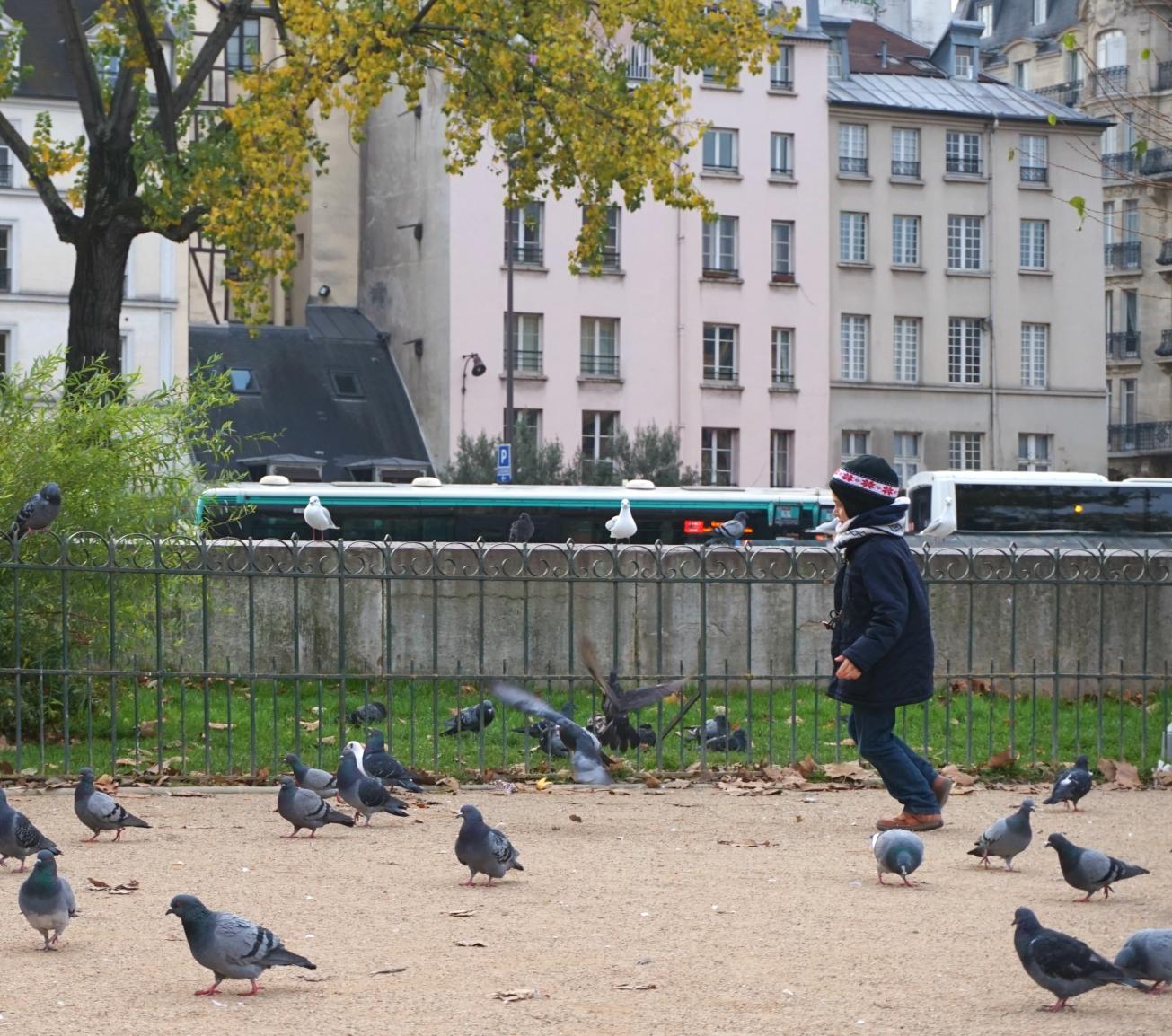 Ma petite tribu Paris 19.jpg
