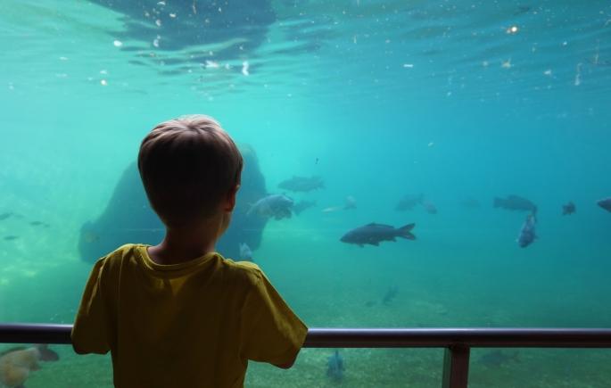 ma petite tribu Zoo 10