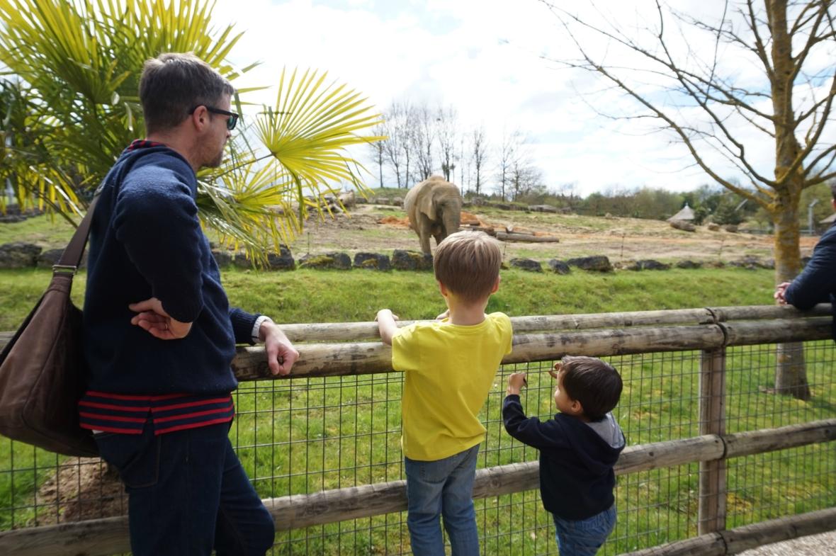 ma petite tribu Zoo 27