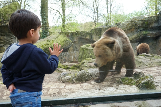 ma petite tribu Zoo 33