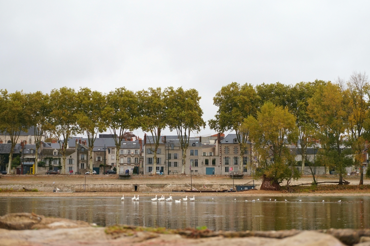 ma petite tribu Loire 2.jpg